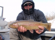 Outstanding Muskegon River Rainbow Trout