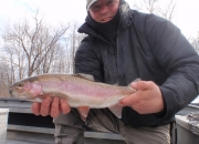 Beautiful 24inch Muskegon river rainbow trout