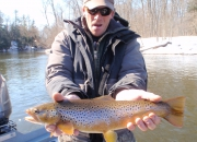 Jeff's 20 inch Muskegon River Brown Trout