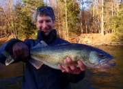 Mark with a Muskegon river walleye