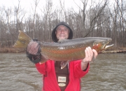 Ed with an awesome Muskegon river steelhead
