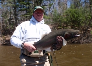 Mark With A Great 2014 Male Steelhead