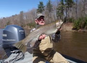Bob With A Really Nice 2014 Spring Steelhead