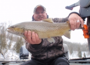 7lb 28-inch Muskegon River Brown Trout