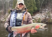 Will with a double stripe steelhead