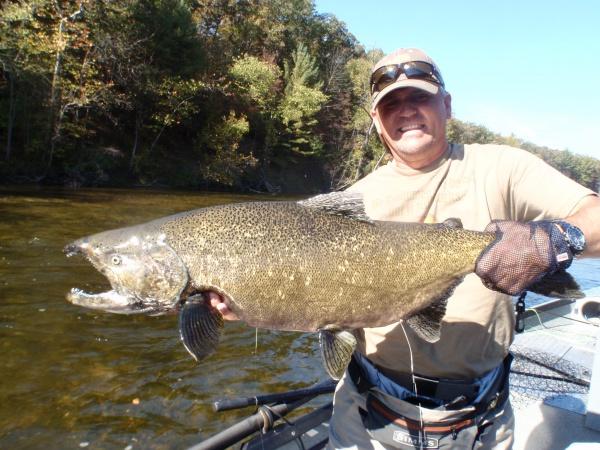 King Salmon 2013