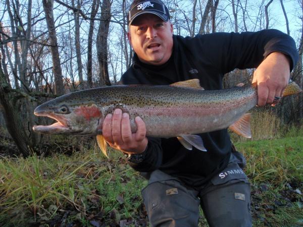 Fall Steelhead Muskegon River