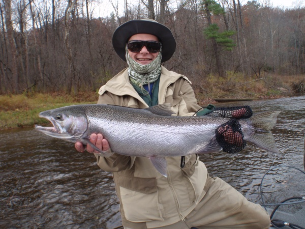 Ed's 2014 Fall Steelhead