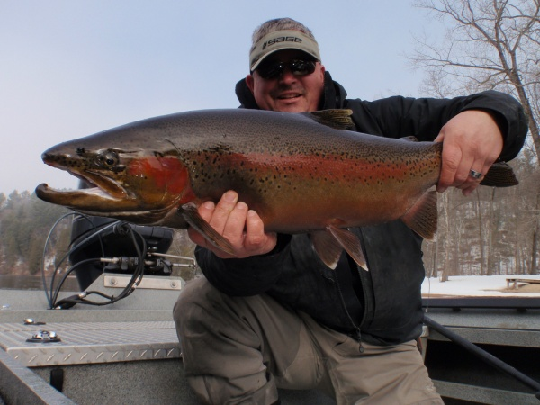 2015 Muskegon River Steelhead