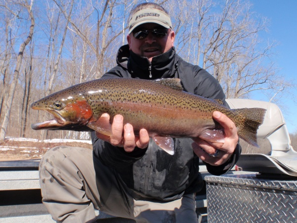 March, 2015 Muskegon River Steelhead