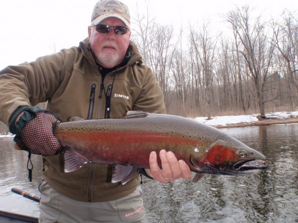 Bert's really nice crimson red steelhead