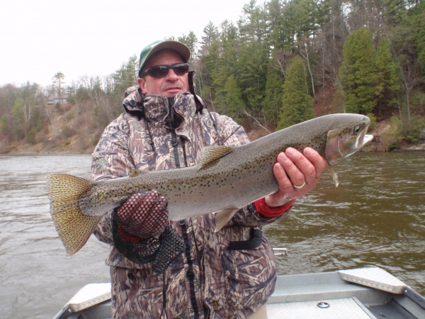 Mark with a nice Muskegon river steelhead