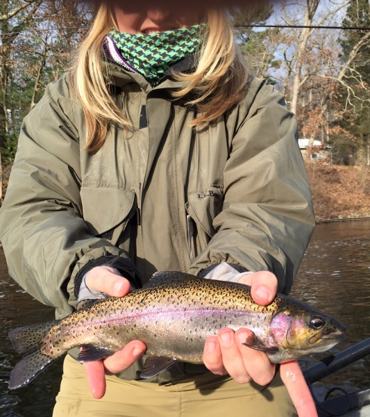 Amy's healthy Muskegon river rainbow trout