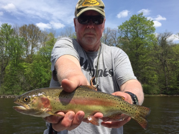 Dry Flies For Trout On The Muskegon River