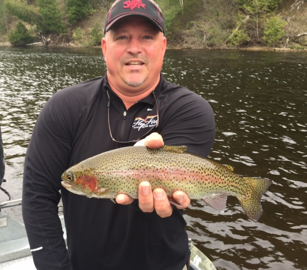 Early Fall Dry Fly Fishing Trout On The Muskegon