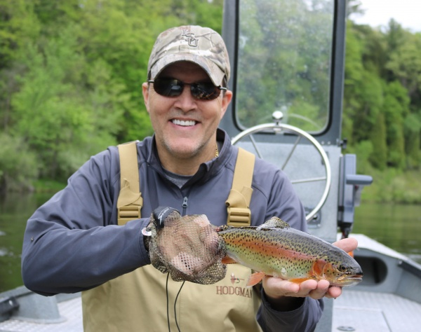 Bows & Browns On Dry Flies!